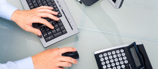 Contrôle fiscal d'une comptabilité informatisée: quelle information pour l'entreprise?